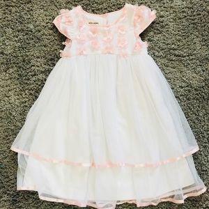 Other - Beautiful flower girl dress.